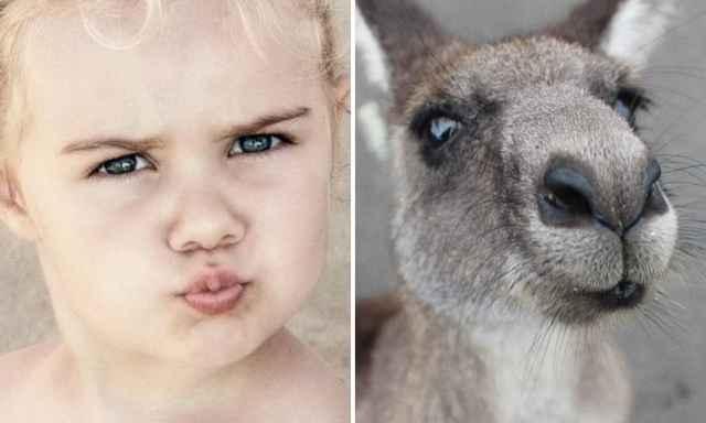смешные фотографии детей и животных