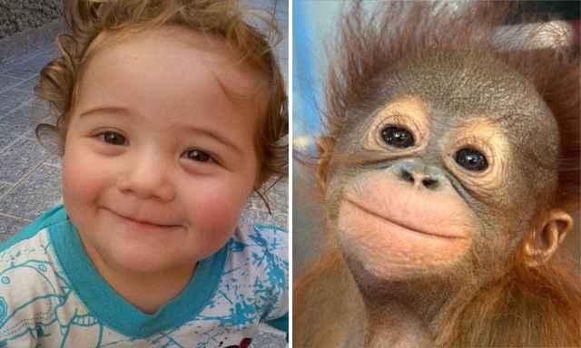 дети и обезьянки