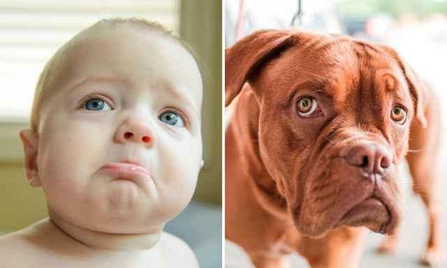 детские эмоции