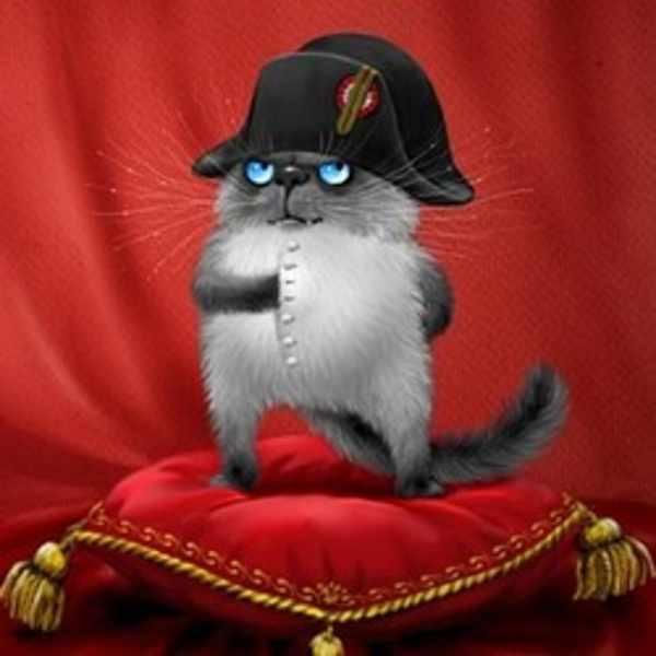 рисунки с котами