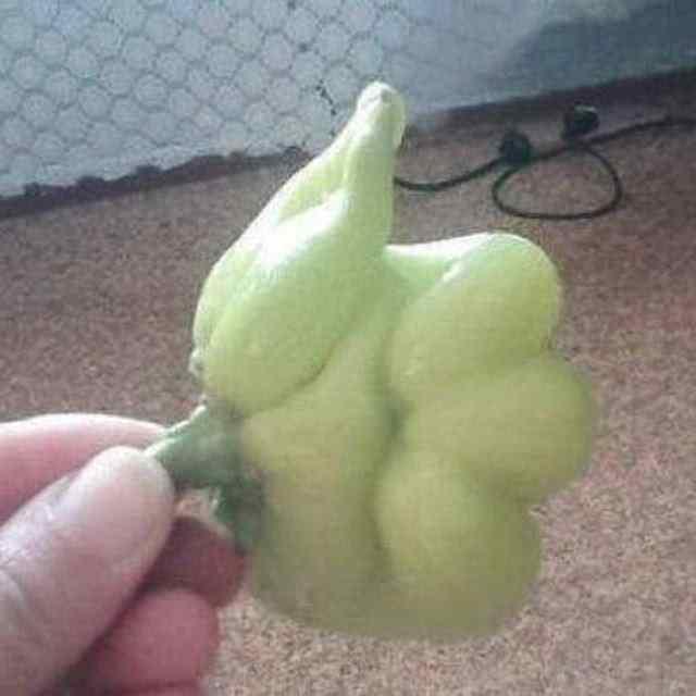 овощи необычной формы