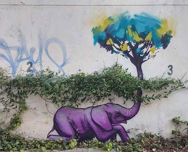 стрит-арт с животными