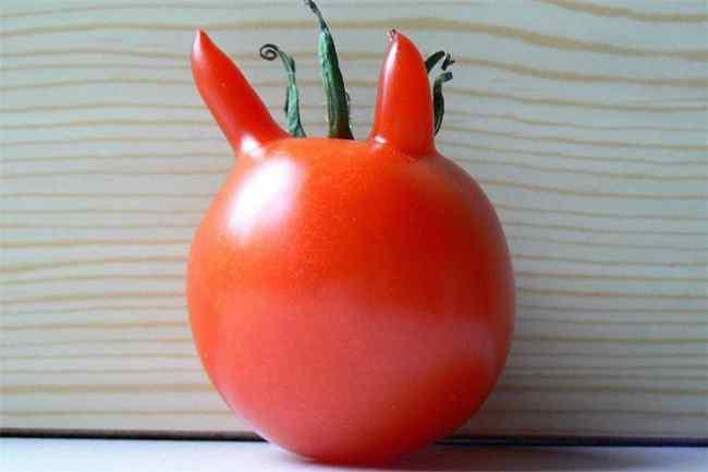необычной формы помидор