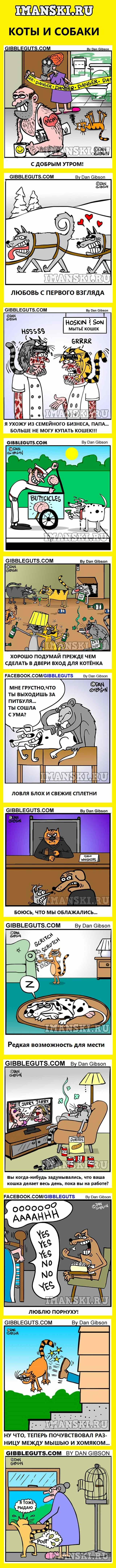 карикатуры про котов и собак