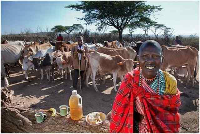 Кения племя Маасаи