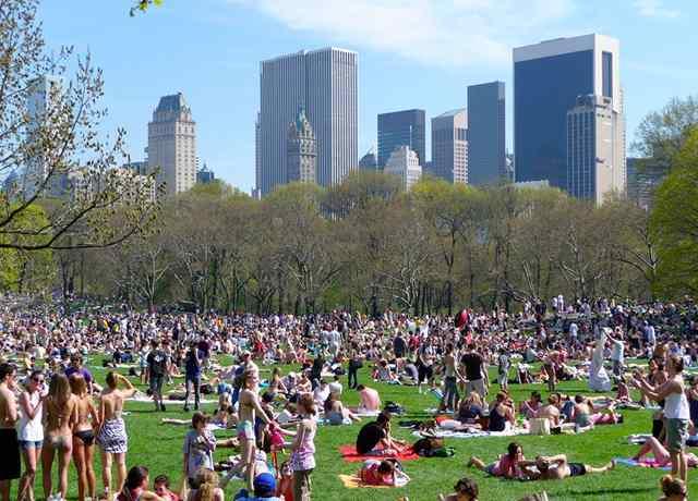 Центральный Парк в Нью Йорке 2