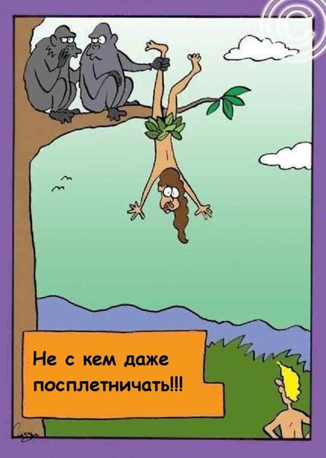 Адам и Ева. Карикатура.