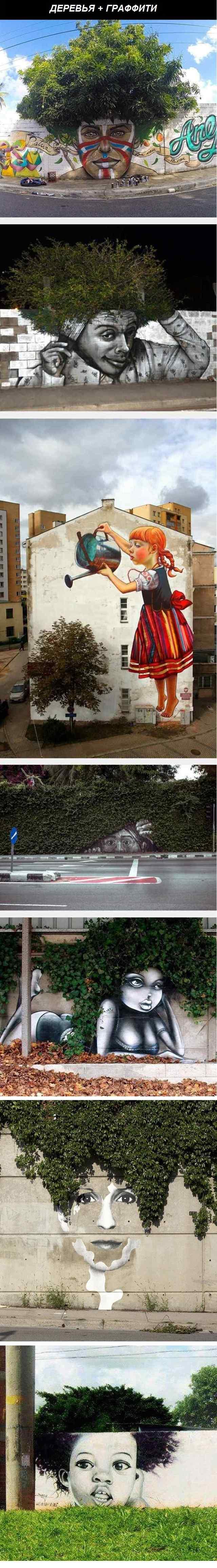 деревья и граффити