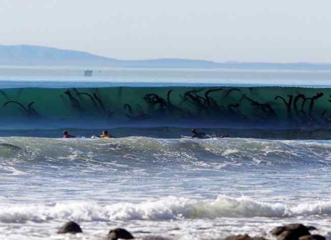 страшные фото про море
