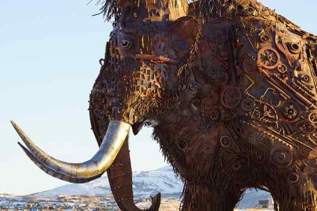 мамонт в Магадане