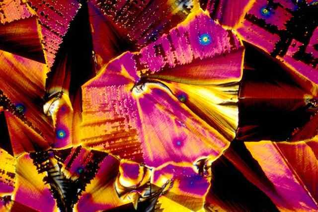 саке под микроскопом