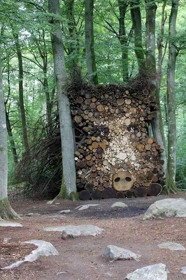 картины из дров