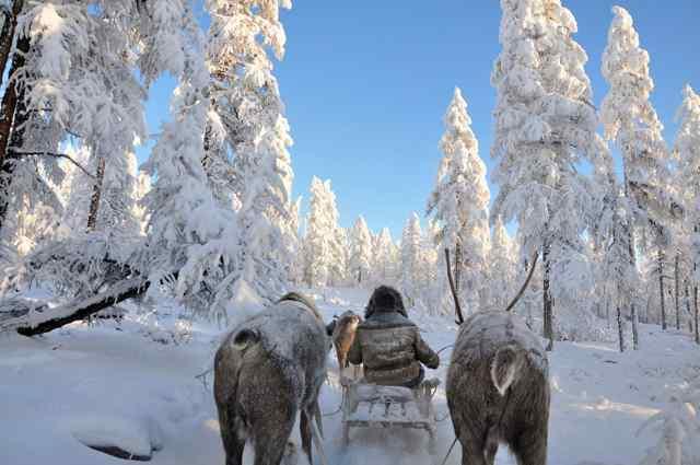 самое холодное место на планете