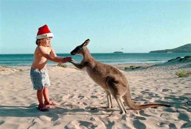 Погода на новый год австралия