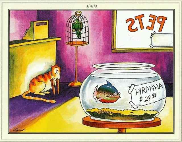 Карикатуры Гарри Ларсона.