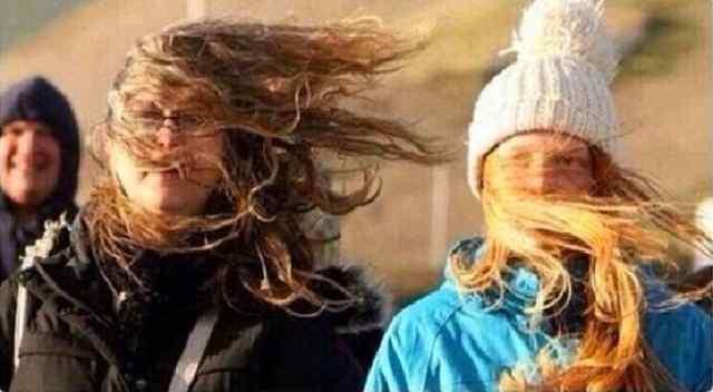 прическа и ветер