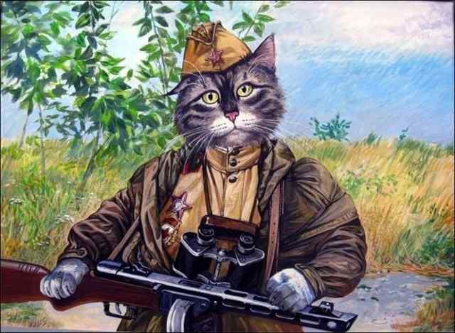 Коты Александра Завалий,