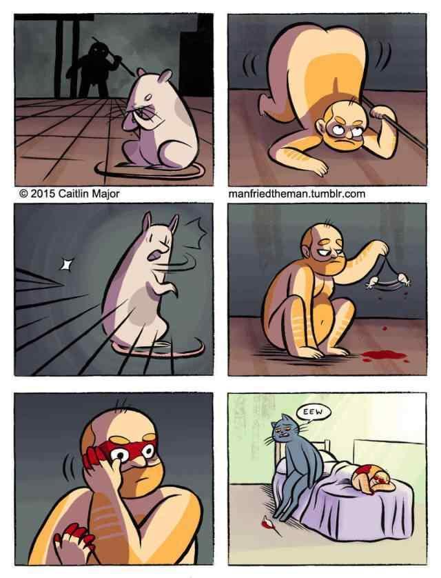 Смешной комикс, Мне приснилось, что я стал котом.