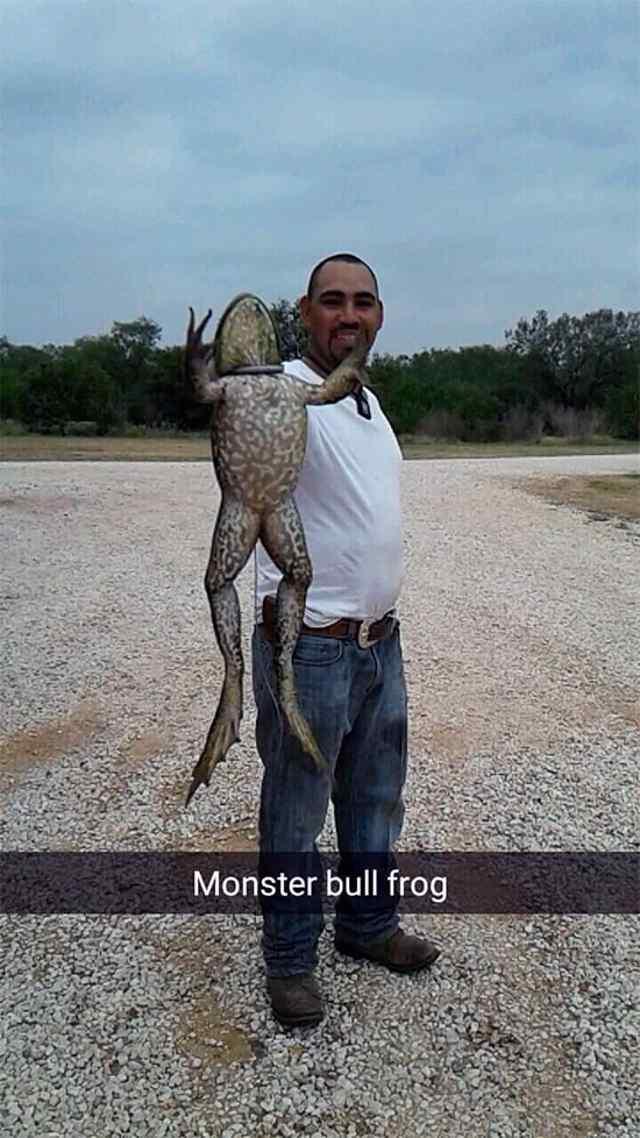 В Техасе поймали 6 кг. лягушку - монстра.