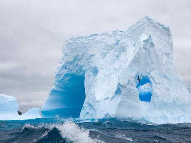 Охота на айсберги. Есть такая профессия.