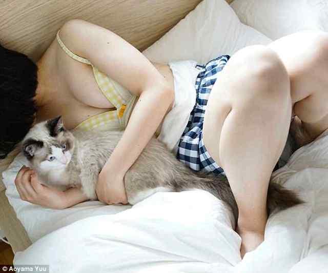 Самое популярное в интернете. Котики и сиськи.