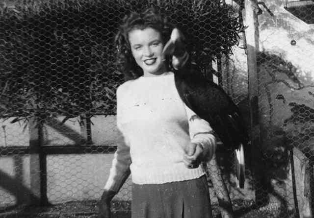 Норма Джин Мортенсон в зоопарке, с хорнбилл на руке (1941)