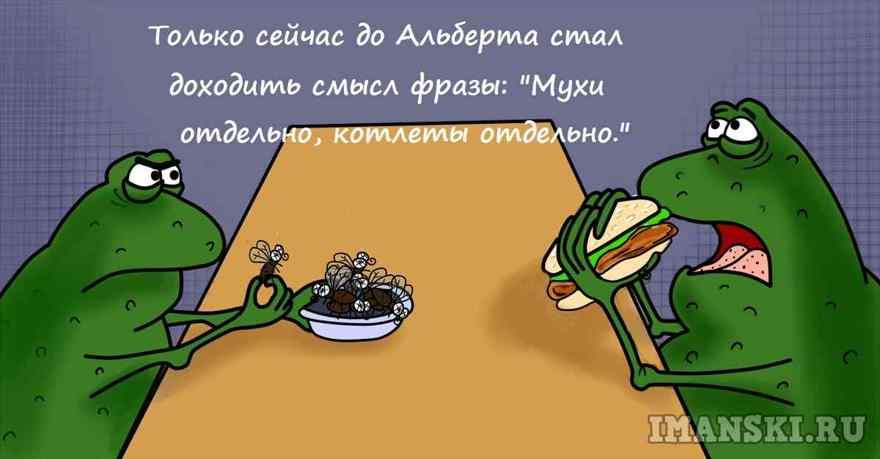 Мухи отдельно, котлеты отдельно...Карикатура. Автор Игорь Иманский.