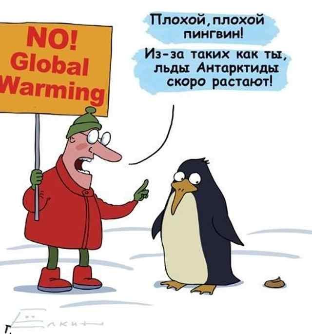 Анекдот Про Пингвинов